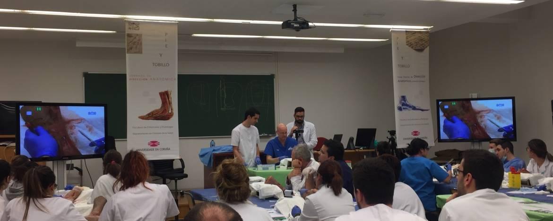 2º Curso Práctico de Disección Anatómica y práctica quirúrgica. Pie y Tobillo